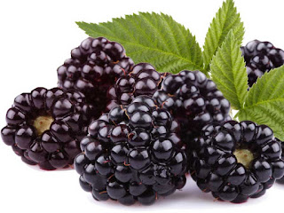 boysenberry fruit images