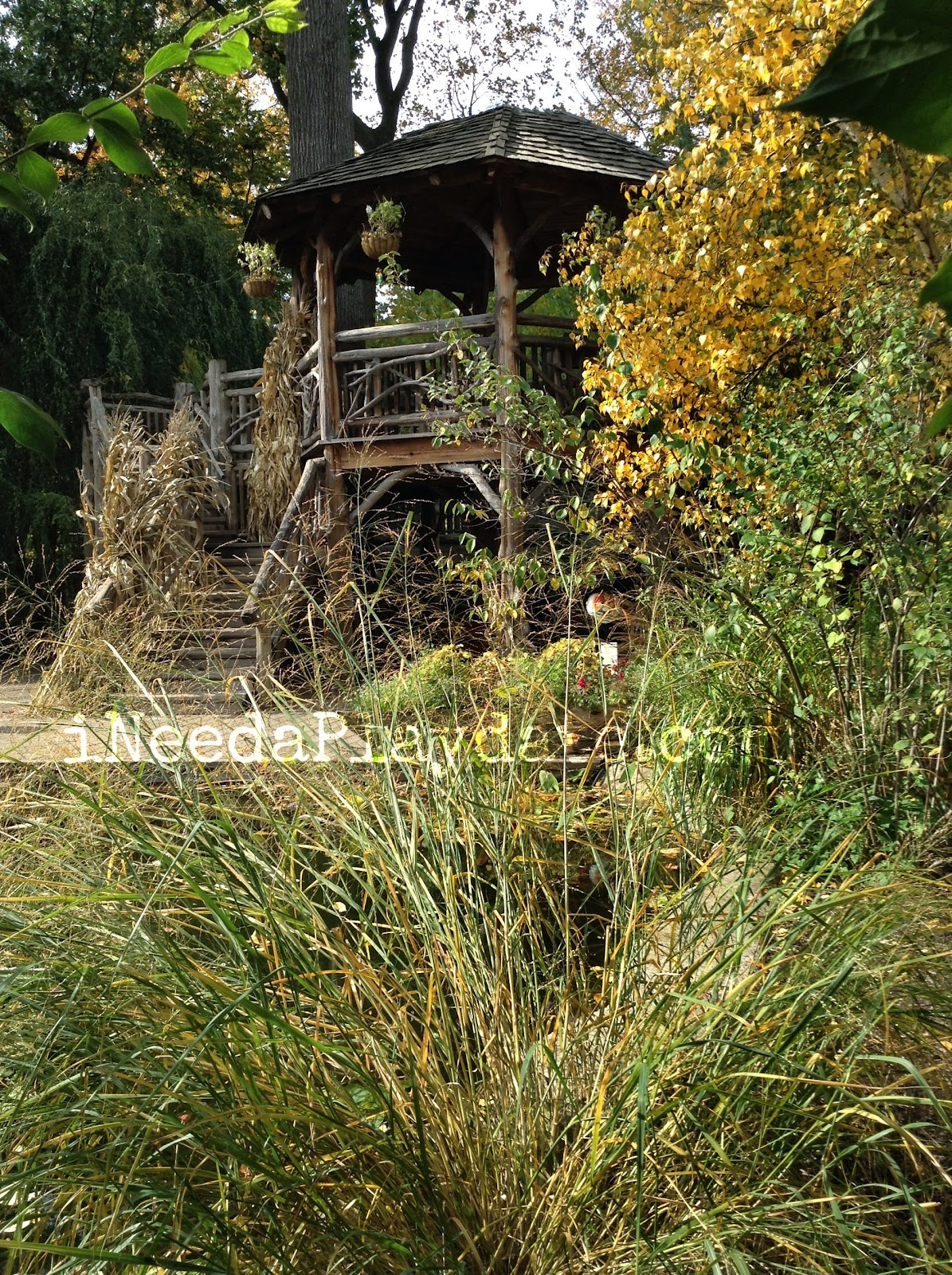 Hershey Tree House  | ColorFall at CLE Botanical Garden