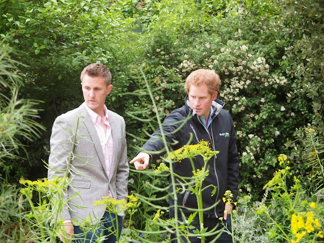 Prince Harry with Matt Keightley on the Sentebale show garden
