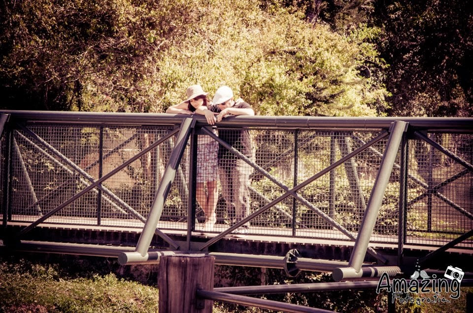 esession-ponte