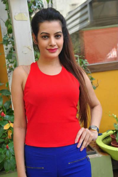 South Indian Actress Deeksha Panth Hot Photo Gallery