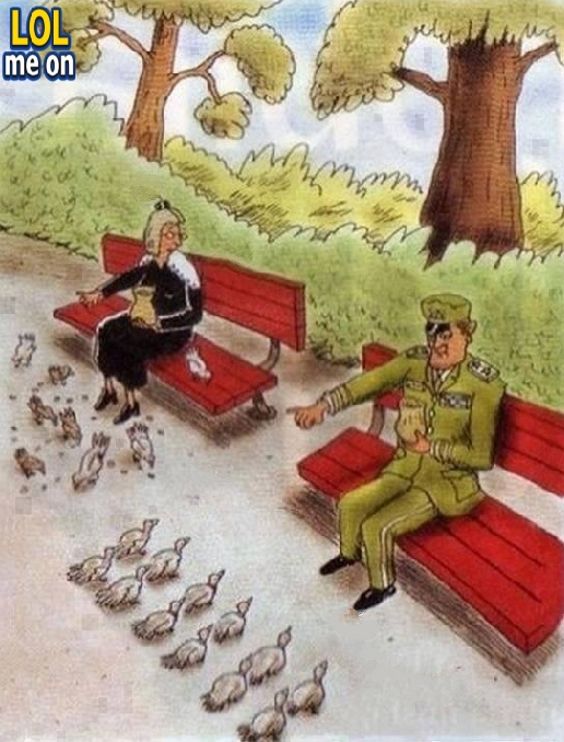 """funny cartoon picture shows The difference between people and military from """"LOL me on"""""""