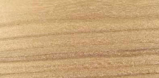 texture kayu vinier