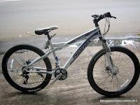 Sepeda Gunung Phoenix 26-177-8 Fashion 26 Inci