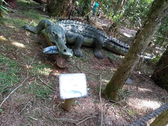 Dinossauros sempre despertam nossa curiosidade. Viveram a milhões de anos atras mas ainda nos facionam e nos encantam. Lá no Vale dos Dinossauros, ficamos frente a frente com esses imponentes animas. Vem ver nossa aventura!