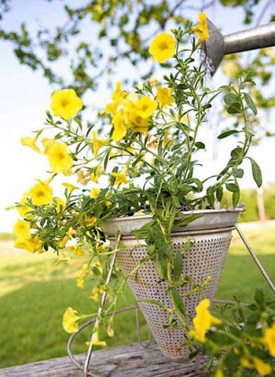 Corong dan saringan bisa jadi pot bunga gantung yang sempurna