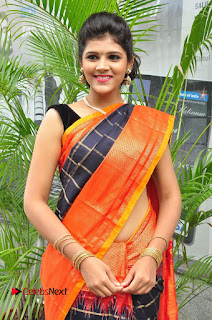 Sangeeta Kamath Pictures in Saree at Silk India Expo Curtain Raiser    ~ Bollywood and South Indian Cinema Actress Exclusive Picture Galleries
