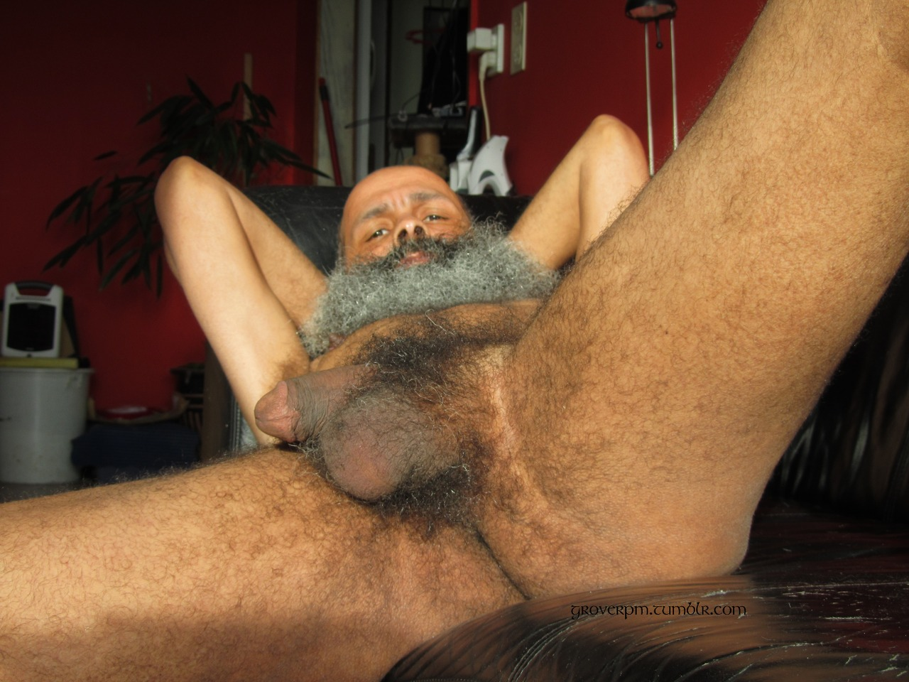Nude Indian Male Hairy Body - New Porn-1141