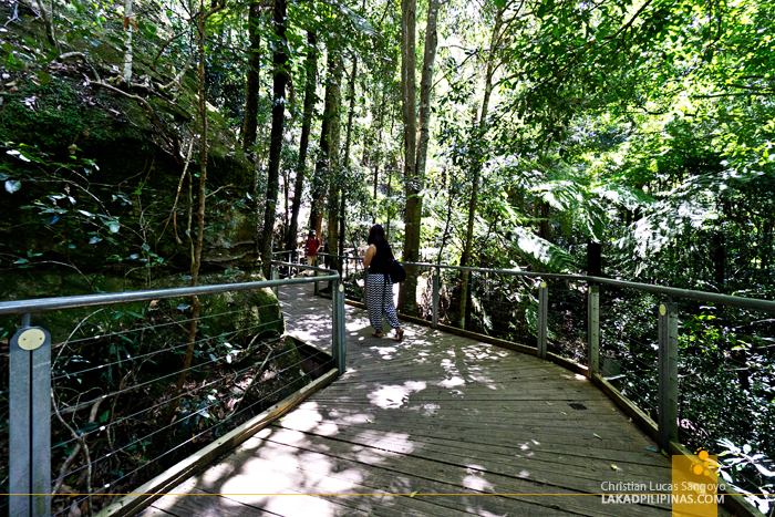 Scenic World Blue Mountains Scenic Walkway