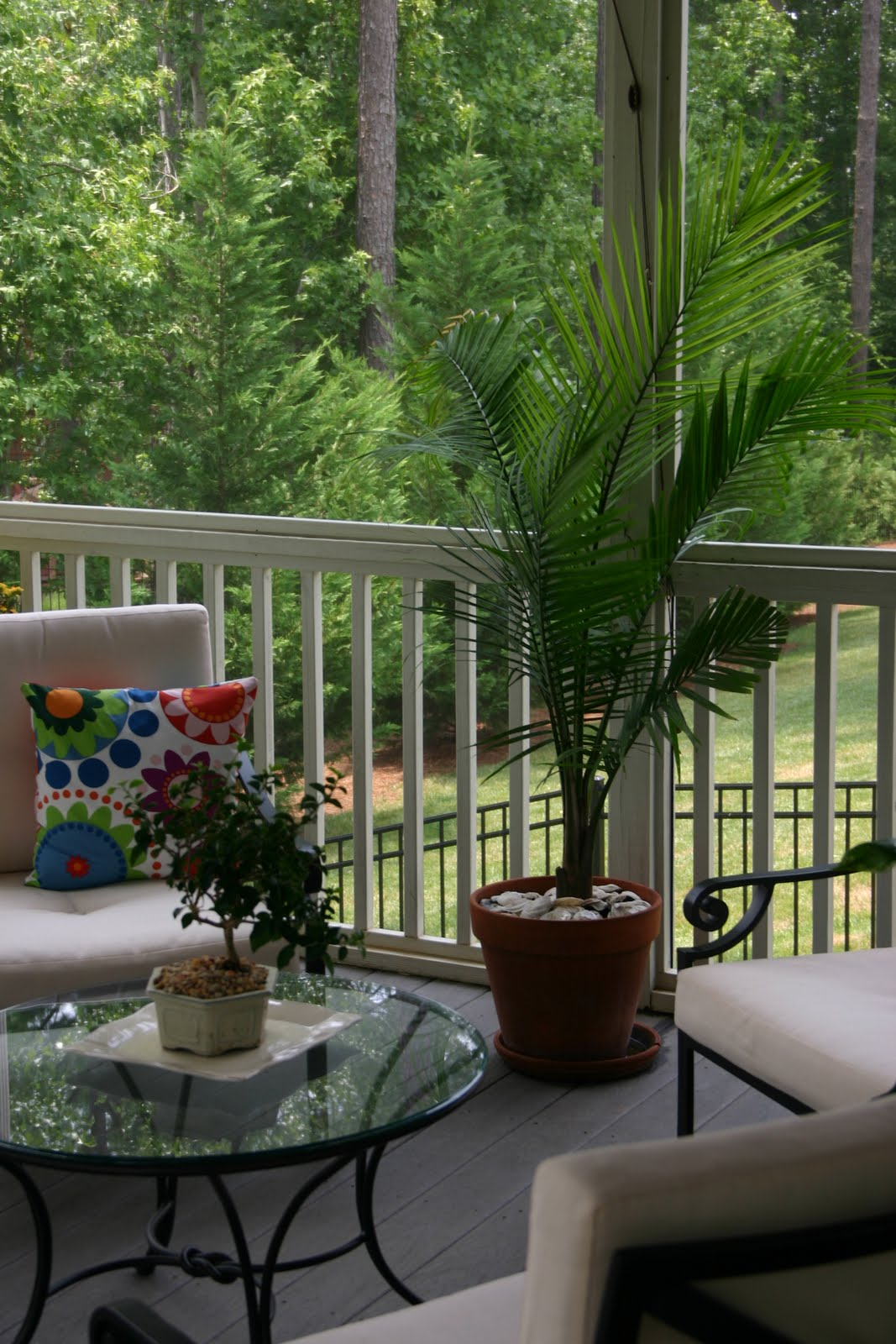 I Am Even Hy Looking At The Plants Outside Onto Screened In Porch From Inside Family Room Or Kitchen