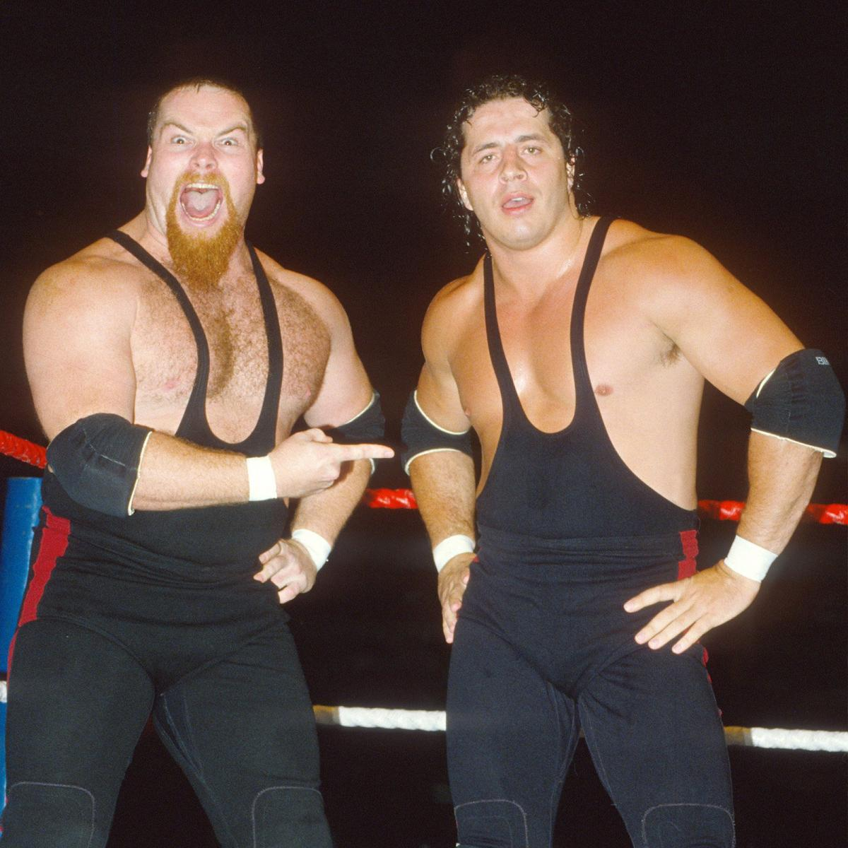 Pro Wrestling Resource: The Hart Foundation: A History of Promos ...