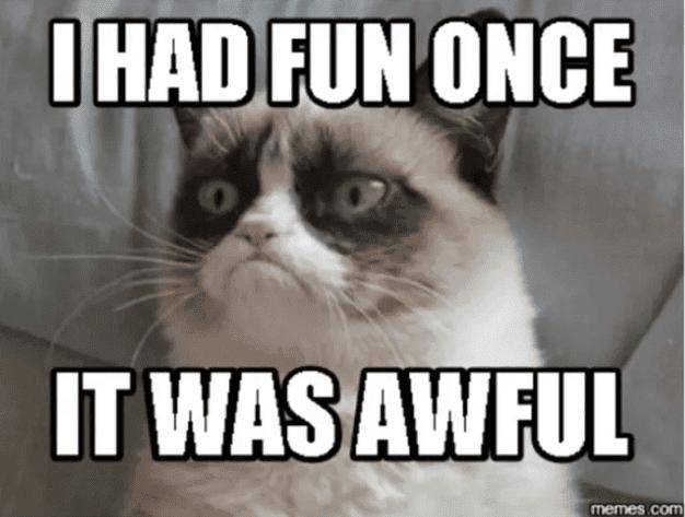 وفاة Grumpy Cat ، أشهر قطة عبر الأنترنت في السابعة من عمرها