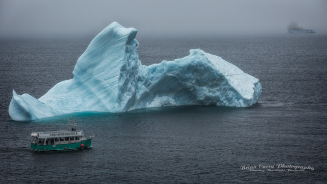 Iceberg in Useless Bay by Brian Carey