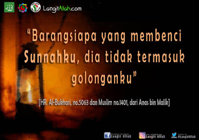 Cara Patungan Qurban Hewan Kambing Sesuai Sunnah Rasulullah, Qurban, langitallah.com