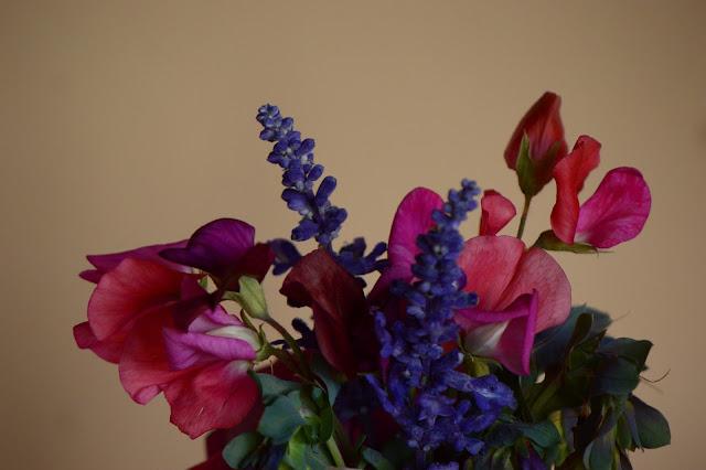 monday vase meme, sweet peas, cerinthe, salvia, small sunny garden, desert garden, arizona garden, amy myers