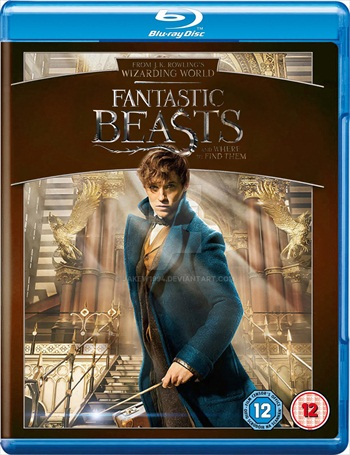 Free Download Fantastic Beasts and Where to Find Them 2016 Dual Audio Hindi  BluRay  300MB