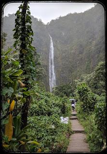 Our Rainy Hike to Waimoku Falls