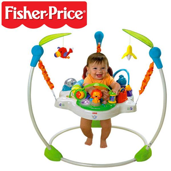 Toys For Rent Fisher Price Precious Planet Jumperoo Why Buy When
