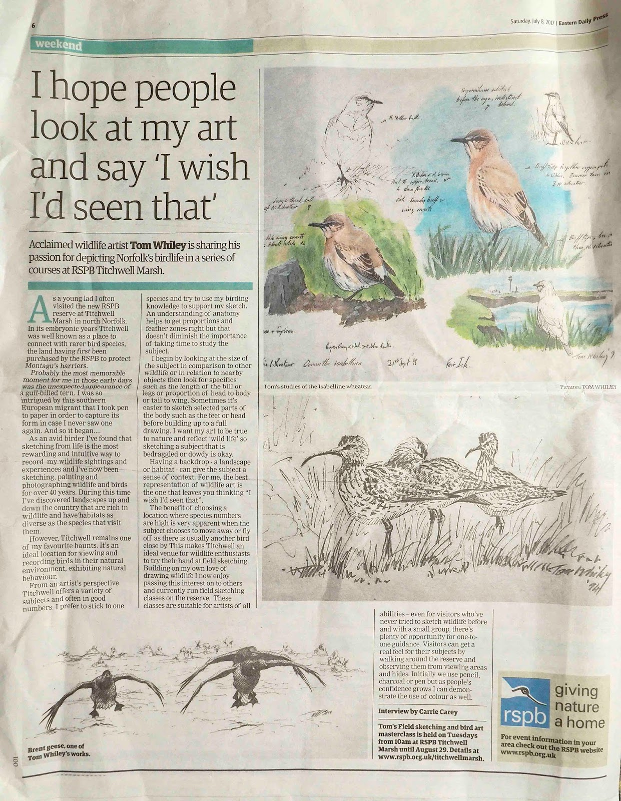 Field Sketching Masterclass, Titchwell Marsh | Join wildlife artist Tom Whiley for a bird sketching master class. Tom will guide you through the process of observing wildlife and committing images to paper. Various techniques will be demonstrated with a particular emphasis on field observation. | Art, nature, RSPB, Titchwell, environment, outdoor