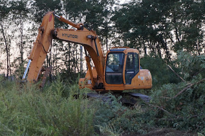 Backhoe on abandoned tip of Hunter's Point with trees in background