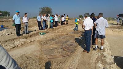 Εντυπωσιακά ψηφιδωτά δάπεδα από τον 4ο αιώνα μ.Χ. στο φως, στο Ακάκι
