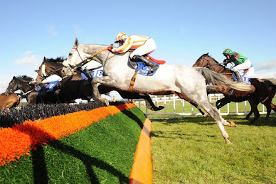 Limerick racecourse, Limerick in Ireland, Horse racing Ireland,