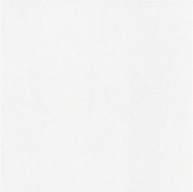 G447106 Vivaz Bianco 40x40