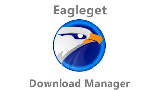 Download Maneger