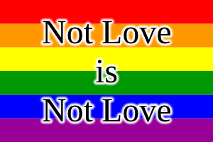 "People are using the term ""love is love"". This is simplistic nonsense. We can take it to its logical conclusion."