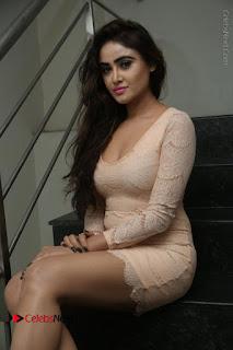 Telugu Actress Model Sony Charishta Stills in Short Dress at Rapture 2017 Grand Logo Launch  0048.JPG