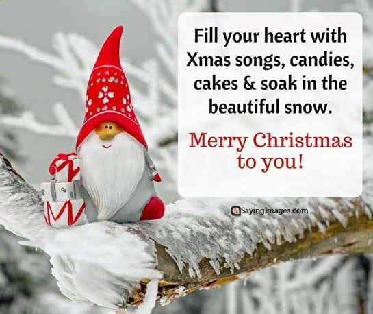 Merry Christmas to You Quotes Sayings Images