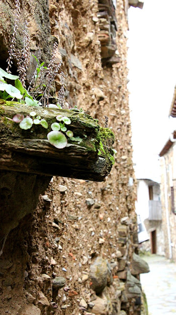 Casas de piedra y Adobe