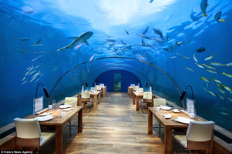 "The restaurant is also open for mid-morning cocktails and can be booked privately for breakfast, weddings or other special occasions. - The ""Most Beautiful Restaurant In The World"" Is Downright Mind-Blowing."