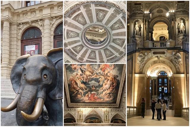 Museo de Historia Natural de Viena - Arquitectura interior e interior