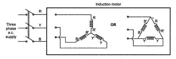 Three Phase Induction Motor ~ your electrical home