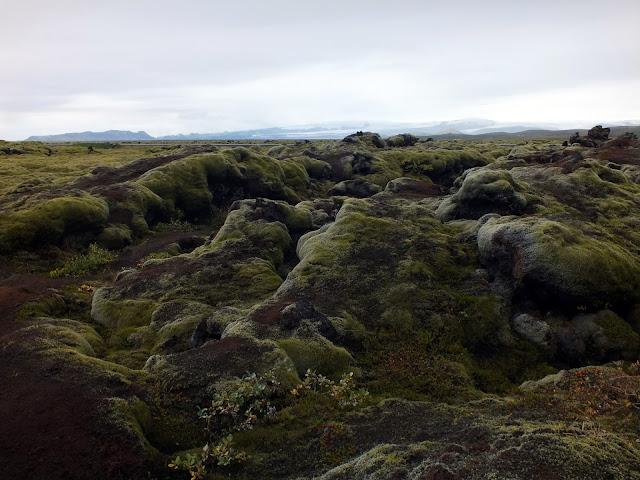 campos de lava y musco en Islandia