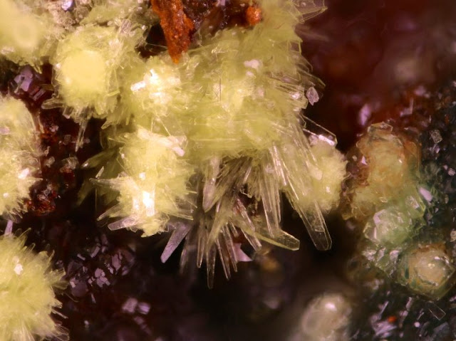 Scientists Discovered Three New Uranium Minerals in Utah