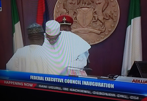 buhari swears in minister