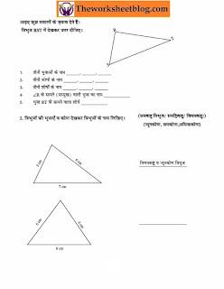 Properties of triangle worksheet  Hindi Medium