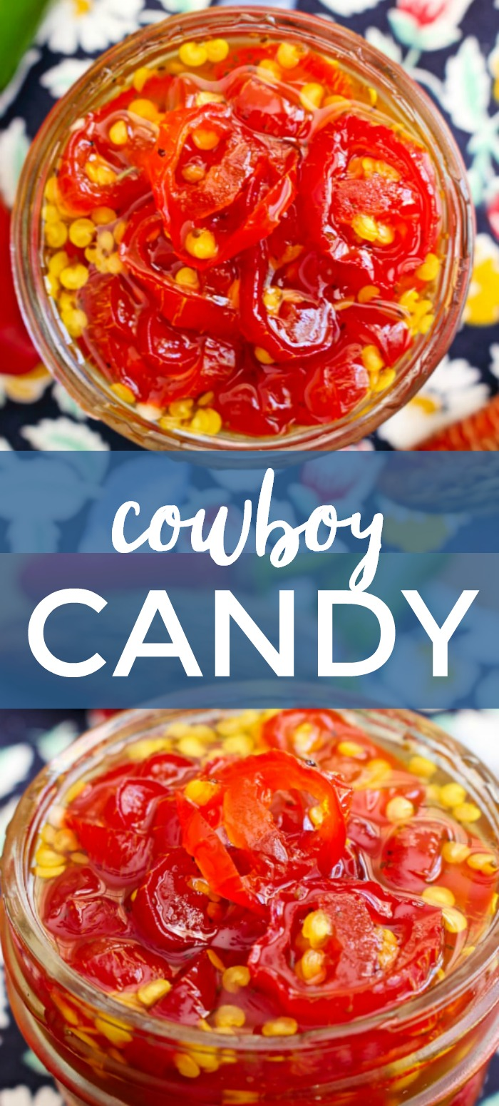 Cowboy Candy is the perfect little bite of sweet and spicy. Once you try it, you will want to have a jar on hand at all times! #jalapenos