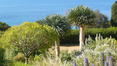 Los jardines mediterráneos de Gilles Clément en Domaine du Rayol
