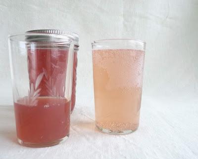 Rhubarb Ginger Syrup with Club Soda