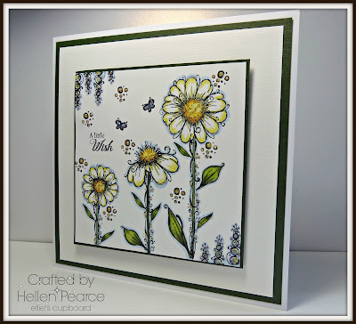 Poppies one day .........Daisies the next!