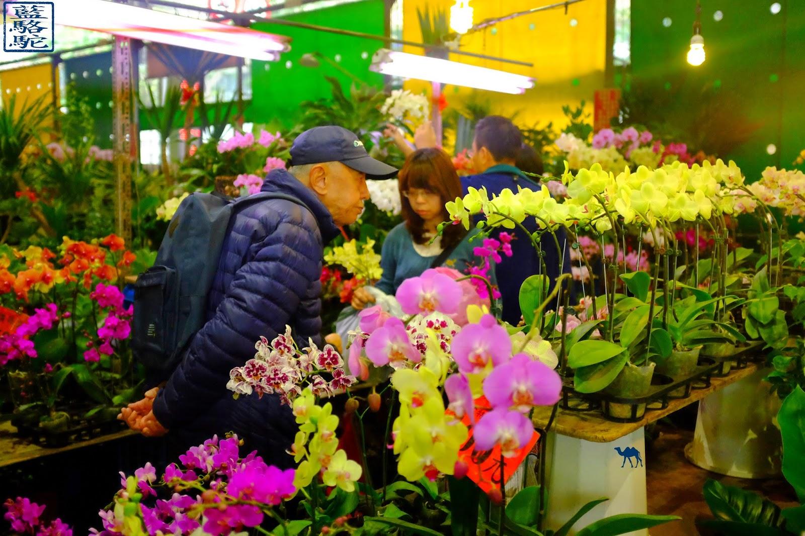 Le Chameau Bleu - Taiwan - Marché aux fleurs de Taipei La Capitale