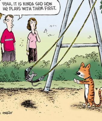 funny cat mouse swing cartoon - yeah it is kinda sad how he plays with them first