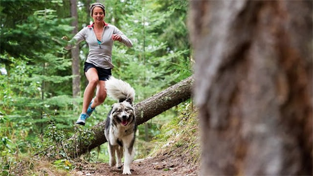 5 Tips For Running With Your Dog