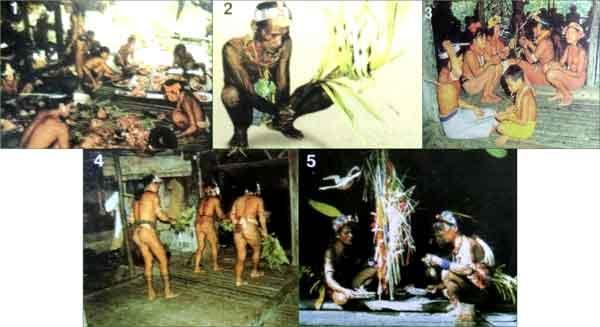 Prosesi-upacara-puliaijat-masyarakat-mentawai