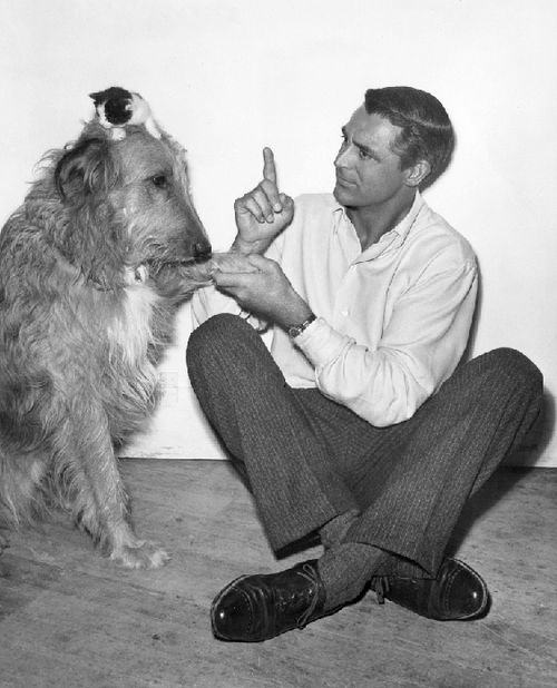Cary Grant loved animals