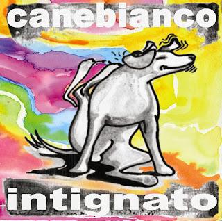 """""""Intignato"""": il nuovo album dei Canebianco."""