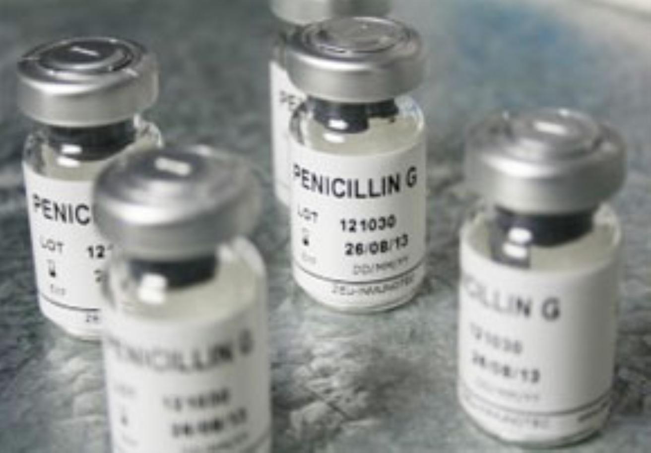 Resultado de imagen para penicilina